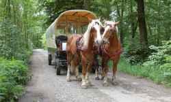 Formanské vozy